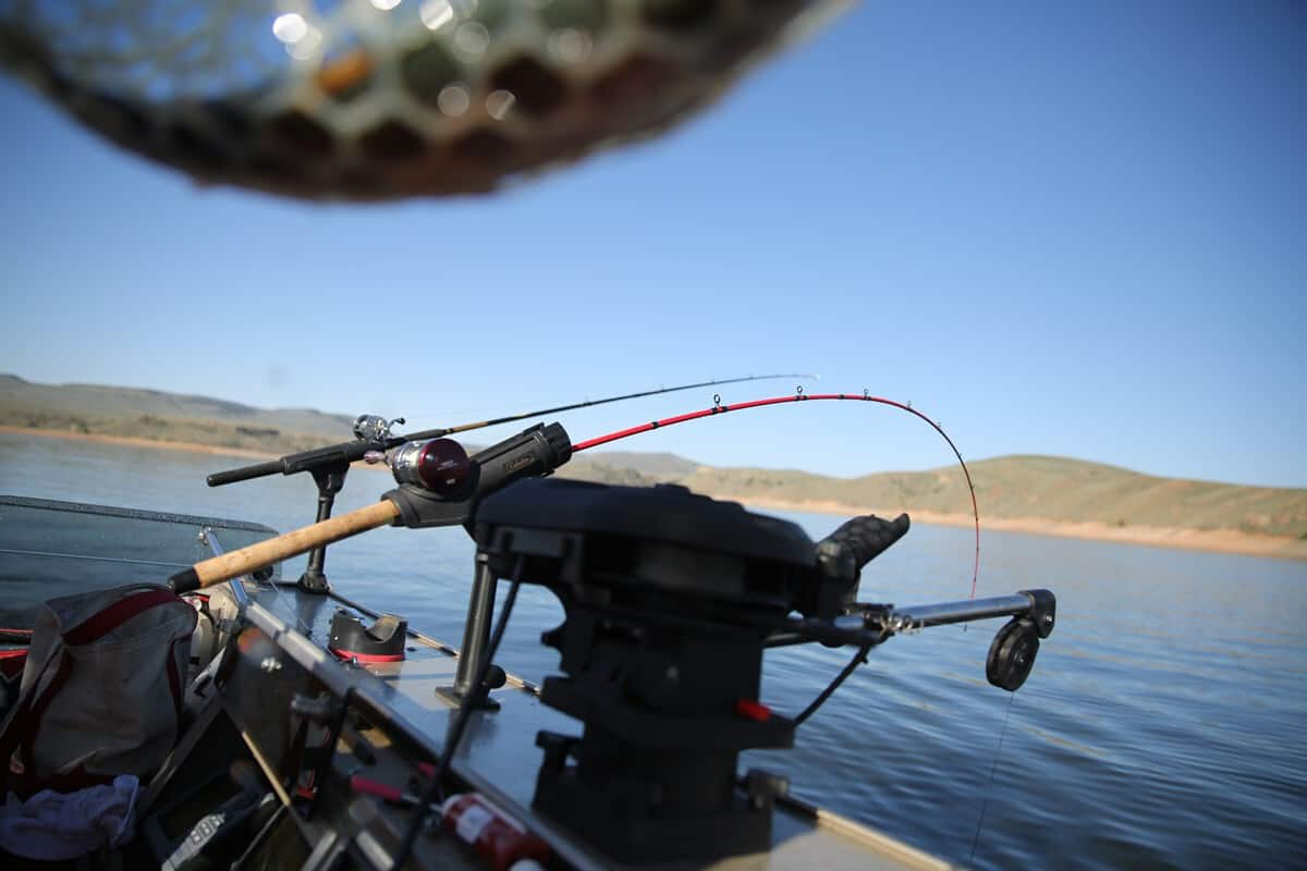 Two fishing rods sit in rod holders along the gunwale of a boat