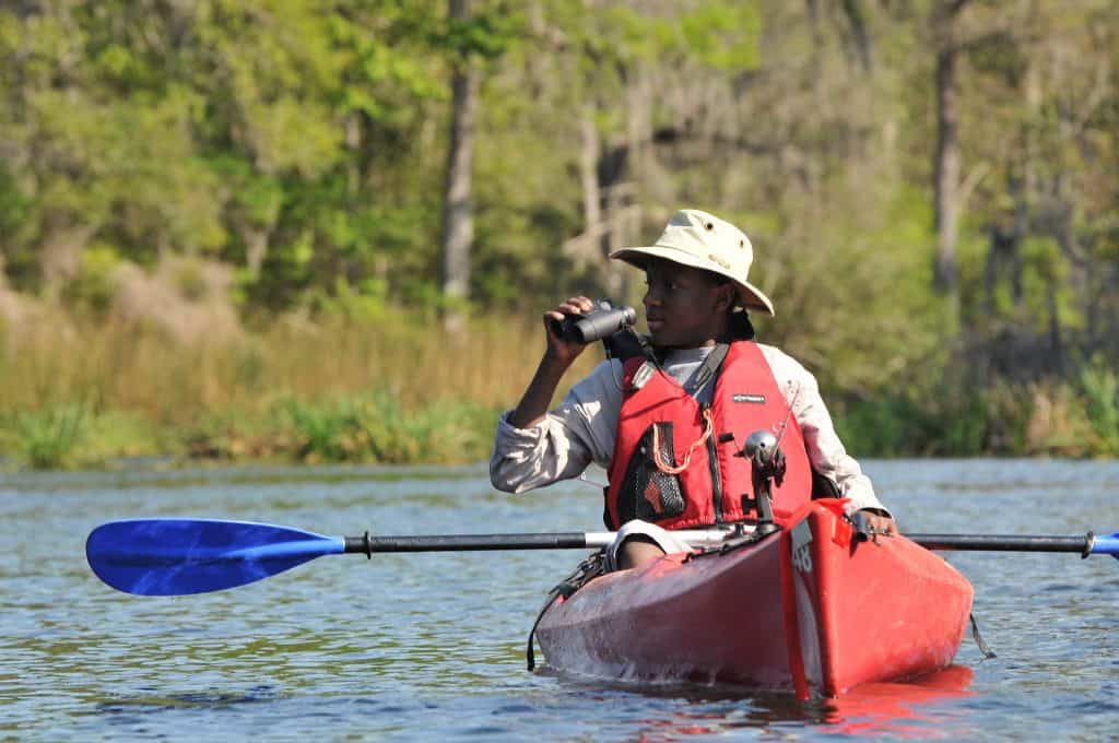 Wildlife Viewing from a Kayak