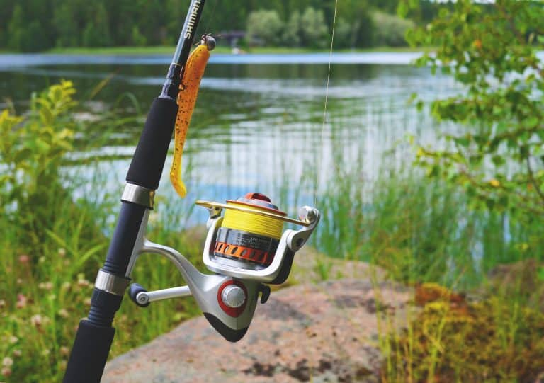 Fishing Rod Water Catch